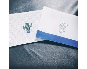 [신상품]선인장 샐러드 크리스탈 접시(화이트)(1p)+손잡이 고급 선물용 케이스 무료