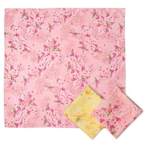 가제스카프 벚꽃